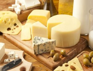 The development of the cheese industry